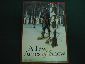 数エーカーの雪